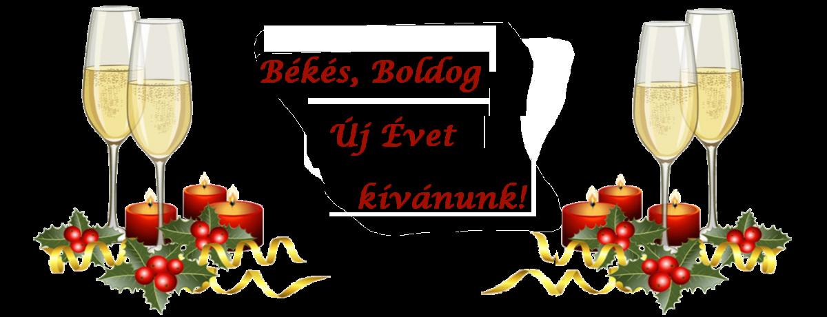 Békés Boldog Új Évet kívánunk! www.szilveszter-erdely.ro