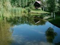 Kecsetkisfalud - Elekes Panzió - Hargita Megye