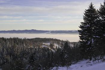 Cazare - Harghita - Piricica (Piricske) - Pensiunea Tihna Muntelui - Mountain Rest - Judetul Harghita - partie de schi