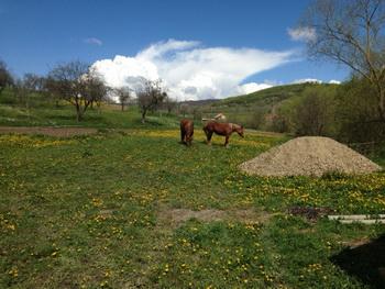 Szállás Kecset - Ervin Angyala Panzió - Hargita Megye