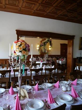 Szállás Marosugra (Ogra) - Haller Kastélyszálló - Haller-kastély - Maros Megye
