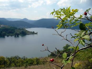 Szállás Vajdahunyad - Csolnakos-tó - Cincis Motel - Hunyad megye